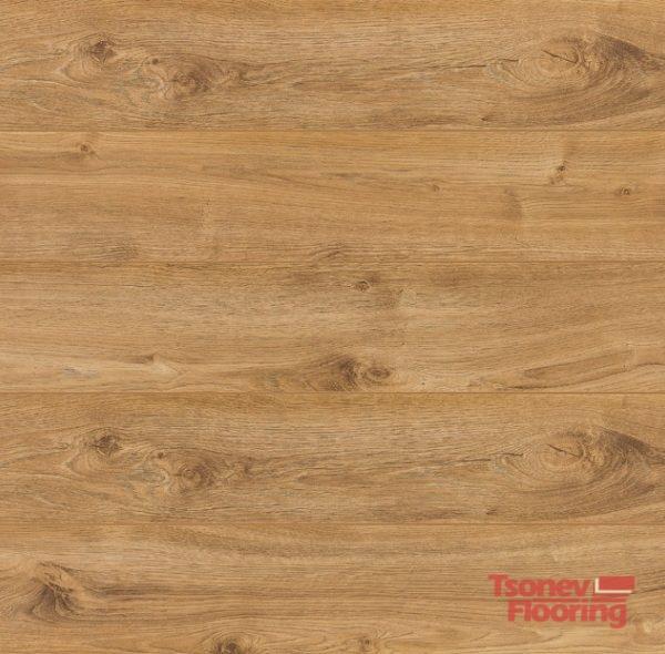 37021-expert-4v-manila-oak