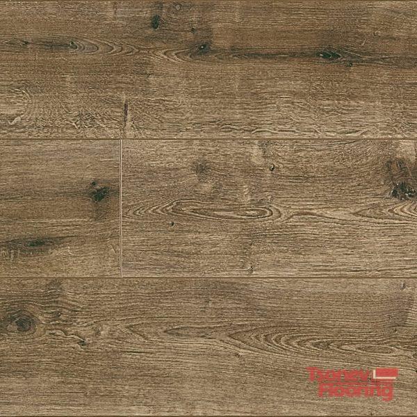 959-Ginger-Oak-