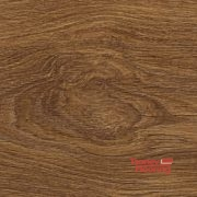 6004-oak carmen1