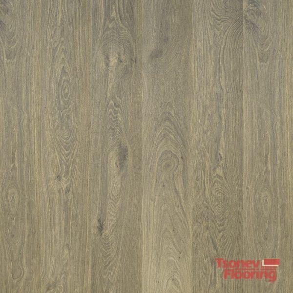 oak-bremen-504110015