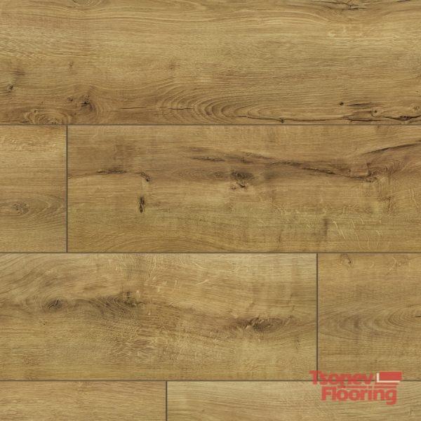 55061-Peoria Oak